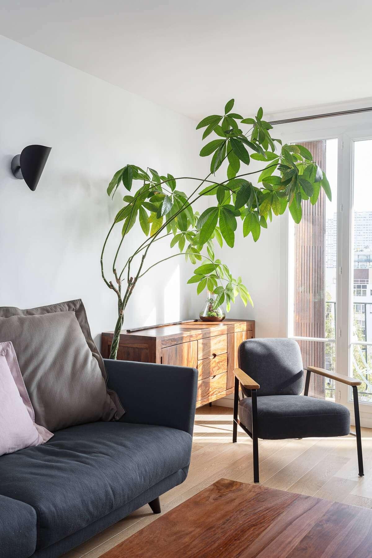 Salon moderne avec meubles en bois et parquet